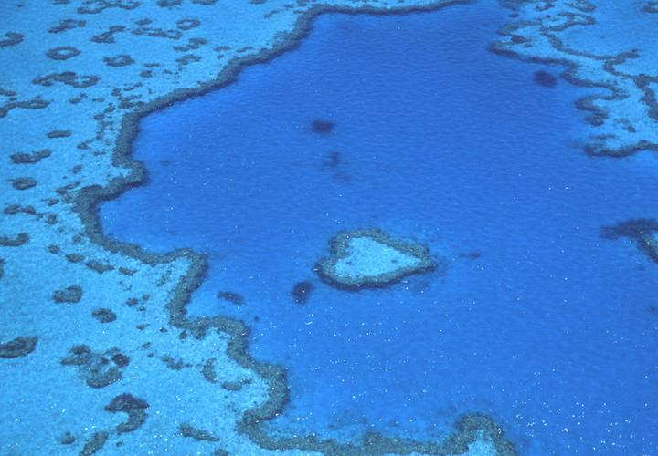 Great Barrier Reef Australia Michelle Chaplow