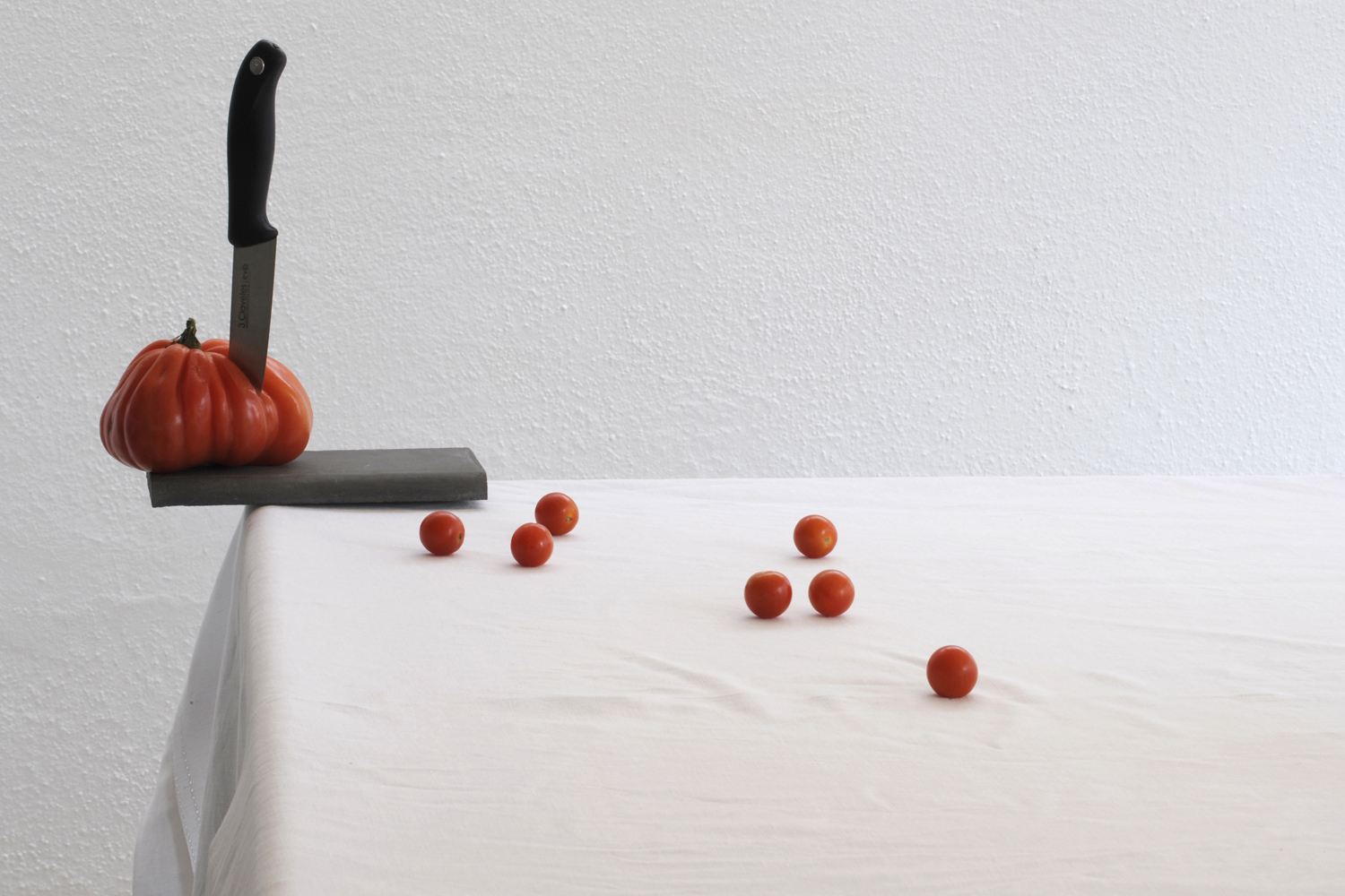 La tomatina contemporary still life photography