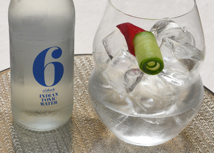 Ice-cold Hendricks Gin and 5 o'clock Tonic © Michelle Chaplow